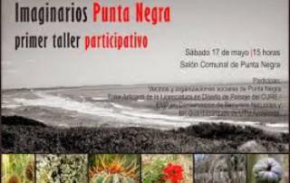 IMAGINARIOS PUNTA NEGRA