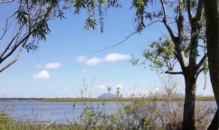 Avances, dificultades y nuevas alternativas en la gestión de Laguna del Sauce