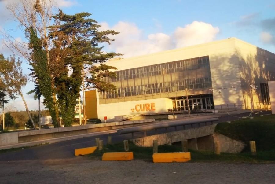 Cursos de Educación Permanente del CURE abiertos a inscripción