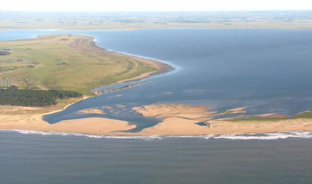 Procesos participativos en la gestión del Paisaje protegido Laguna de Rocha