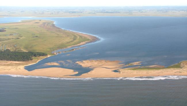 Procesos participativos en la gestión del Paisaje protegido Laguna de Rocha.