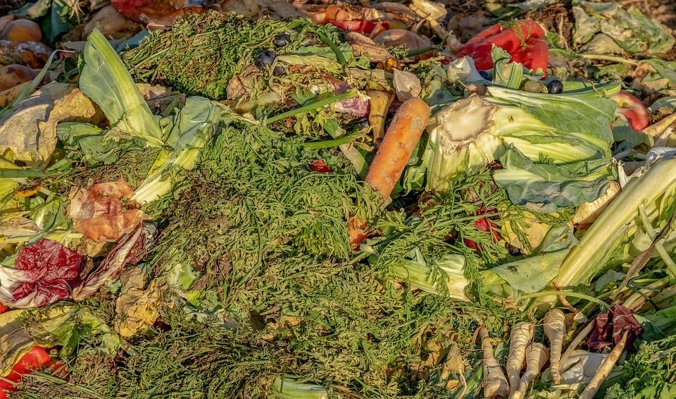 Alternativas de gestión de residuos en restaurantes de José Ignacio
